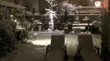 7 in Sneeuw
